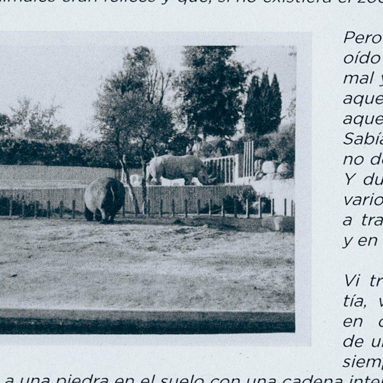 Foto del padre (1981)